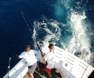 sportfishing in Mazatlán y Cancún - Riviera Maya